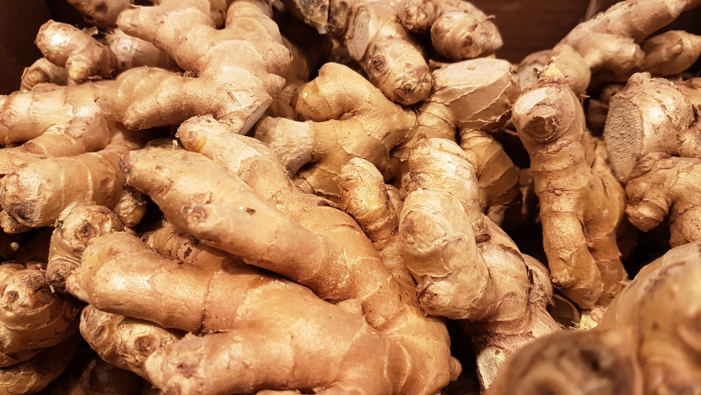 benefits of raw ginger daily